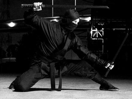 Nin Jitsu